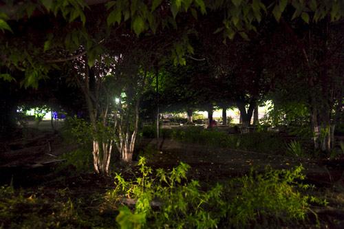 Im Park in Tirana